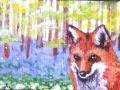 fox.jpeg