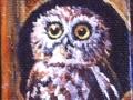 mini owl.jpeg